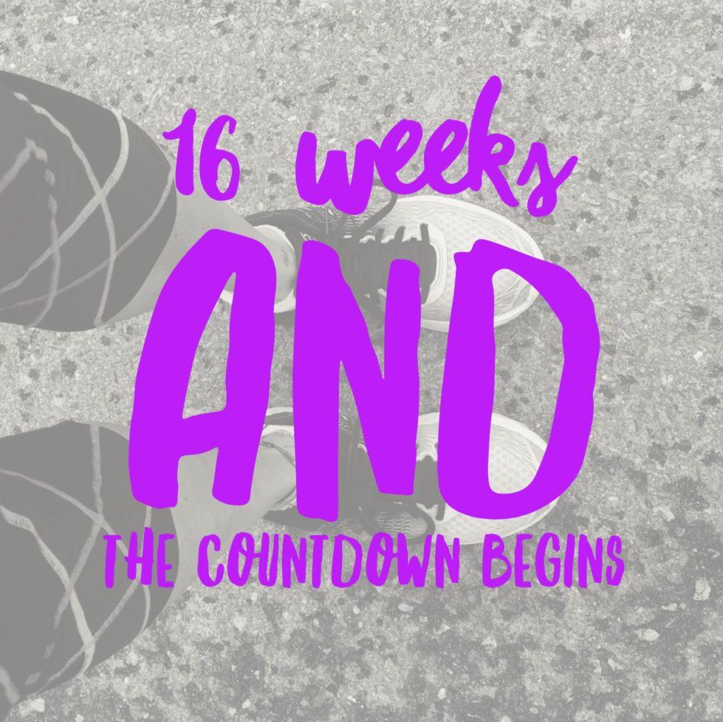 16 week countdown